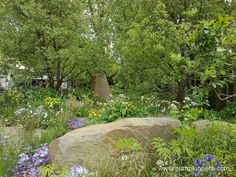 At The RHS Chelsea Flower Show visitors can see the latest innovations and garden technology and design, and the newest plants. Memorial Plants, Chelsea 2016, Wild Style, Chelsea Flower Show, Colorful Garden, Teenage Years, Water Garden, Water Features, Contemporary Design