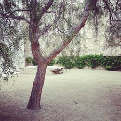"sashagrubor: ""#losangeles #gettycenter"" (Taken with Instagram)"