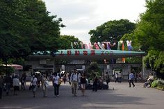 Ueno Zoo - I have great childhood memories of this place. Each time we went to Tokyo, this will be the first place my grandfather will take my brother and I.