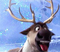 """It kind of makes sense, because the kingdom of Arendelle is based off of Norway. Oh, and because the world went bonkers for Frozen. 