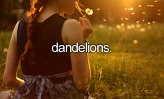 Dandelions are actually edible and very very good for you. They have been used medicinally for centuries. :)