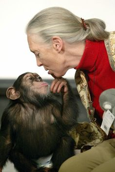 Jane Goodall, British primatologist who started studying chimpanzees at age 26 & has been helping humans understand these complex primates. The Jane Goodall Institute engages people worldwide in efforts to care for our planet.