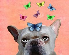 French Bulldog Butterflies 14x11 French bulldog print, frenchie poster frenchie poster dog print illustration, picture, painting, graphic