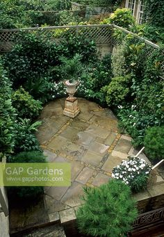Harpur Garden Images :: Small urban garden viewed from above overview metal urn pot urban walled garden trellis wall boundary courtyard. Outdoor living patio terrace change in levels different levels retaining wall evergreen planting s Small Courtyard Gardens, Small Courtyards, Small Gardens, Outdoor Gardens, Small Terrace, Small Patio, French Courtyard, Courtyard Design, Small Backyard Gardens