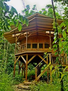 Sustainable Finca Bellavista Treehouses in Costa Rica I saw these on the worlds best tree houses Voyage Costa Rica, Woodland House, Cool Tree Houses, In The Tree, Plein Air, Construction, Play Houses, My House, Story House