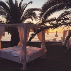 #croatia #brac #supetar #sea #sunset #palmtree #travel