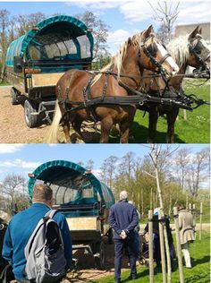 Arrangement ontdek de Hoeksche Waard met paard en wagen, meer info : www.meerwaard.nl Foto gemaakt door Meer Waard