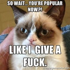 Grumpy Cat. Popular