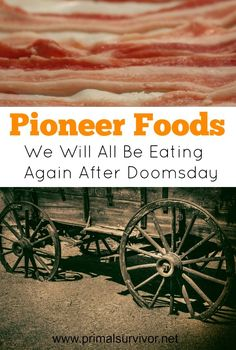 Pioneer Foods We Will All Be Eating Again After Doomsday. How the pioneers ate is one of the most fascinating aspects of their life. It gives you insight into how creative and hard-working they were in their endeavors to sustain their families in tough s Survival Food, Homestead Survival, Camping Survival, Outdoor Survival, Survival Prepping, Survival Skills, Emergency Preparedness, Prepper Food, Emergency Preparation