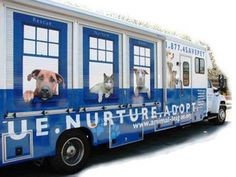All About Animals Mobile Spay and Neuter Clinic in Detroit.