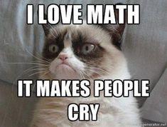 Even Grumpy Cat Likes Math #CatLove #grumpycat