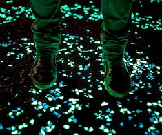 Create a surreal nighttime environment in your yard using the glow in the dark pebbles. These all-weather pebbles emit a brilliant glow that'll transform your backyard into a magical setting, making them ideal for any landscaping project.