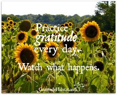 Gratitude in every day....leads to a joyful life. Visit us at: www.GratitudeHabitat.com #gratitude #every-day-gratitude #Gratitude-Habitat