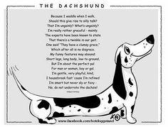 The Dachshund! Love it!! :)