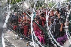 Umfrage zur EU: Junge Osteuropäerwollen Freizügigkeit, aberkeine Flüchtlinge - SPIEGEL ONLINE - Politik