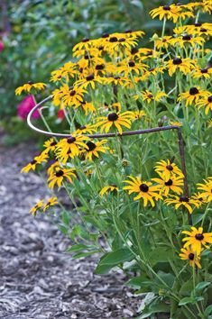 Jardin Half-Round Plant Supports, Set of 2 These would be excellent for some of the taller, heavier clumps of perennials on the front flower bed slope. Garden Supplies, Garden Tools, Garden Ideas, Garden Pests, Garden Art, Dream Garden, Garden Projects, Backyard Ideas, Modern Plant Stand