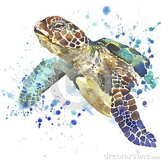 Watercolor Stock Photos, Images, & Pictures – (168,490 Images) More
