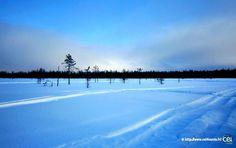 Séjour linguistique en Laponie avec le CEI  #Laponie #Lapland #CEI #voyage #travel #sejourlinguistique #blue #winter #nature #snow