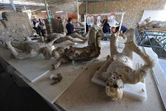 """""""It can be very moving handling these remains when we apply the plaster,"""" Giudice told journalists."""