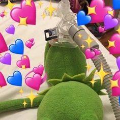 My abundance of wholesome Kermit New Memes, Funny Memes, Funny Quotes, Food Quotes, Happy Quotes, Positive Quotes, Memes Amor, Sapo Meme, Heart Meme