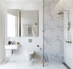 Wall hung toilet, curbless shower & single sheet of glass- shower drain like one proposing