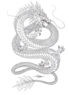 ▷ Over 75 ideas for tattoo motifs with deep meaning - white dragon with . - ▷ Over 75 ideas for tattoo motifs with deep meaning – white dragon with a ball in the mouth, dr - Dragon Tattoo For Women, Dragon Tattoo Designs, Tattoo Designs For Women, Dragon Tattoo On Spine, Dragon Tiger Tattoo, Dragon Tattoo Drawing, Dragon Sleeve, Back Tattoos, Future Tattoos