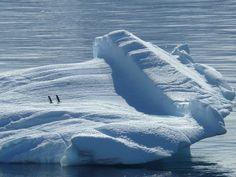Iceberg, Banquise, L'Antarctique, Pôle Sud, Pôle Nord