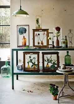 #Mrpricehome #botanicals #Glass #Trend
