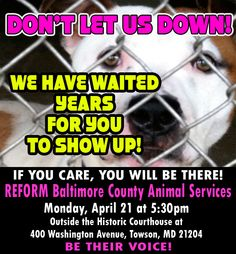 THIS PROTEST IS EVEN MORE IMPORTANT THAN THE LAST!! Please show up for these babies! We are the ONLY VOICE THEY HAVE!  In Baltimore County: The shelter that would NEVER let us network the dogs! It's about time that we SPOKE FOR THEM NOW! Please come and march with us! If you are anywhere near the Baltimore area, or can take a ride... if you REALLY CARE, you will be THERE!!!!