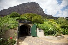 The Cape's finest wine farm restaurants to visit for lunch this season