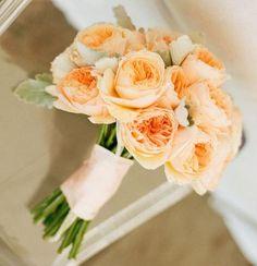 #buque #bouquet