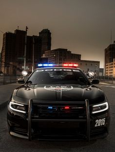 Watch out! 2015 Dodge Charger Pursuit Launched, Pulling You Over Soon... @LadyLuxeJewels