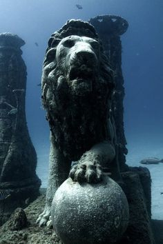FLORIDA // Neptune Memorial Reef, Key Biscayne