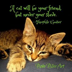 Theophile Gautier Quote: A cat will be your friend, but never your slave. Purrfect gift for the cat lover! Art Prints Quotes, Wall Art Quotes, Quote Wall, Cats Bus, Cats And Kittens, Cats Meowing, Cat Lover Gifts, Cat Lovers, Cat Plants