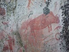 Artery Lake, Manitoba pictograph of a bison.