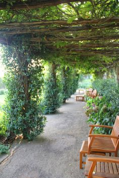 Beautiful Green Santa Barbara Courtyards