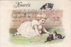 chromo knorrs tapioca exotique - small girl crawling  towards two kittens and watched by cat behind a wall | by patrick.marks