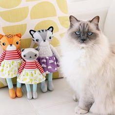 Classic Shanti photobomb!  . . . . . #handmadedoll #clothdoll #handmadetoy #kidsdesign #kidsdecor #catdoll #tigerdoll #leoparddoll #ragdollcat #ragdoll #spoonflowermakers #organiccottonsateen