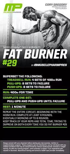 Fat Burner #29