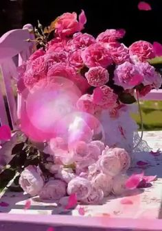 Rosas Hermosas Discover 1 million Stunning Free Images to Use Anywhere Beautiful Love Pictures, Beautiful Flowers Images, Beautiful Flowers Wallpapers, Beautiful Nature Wallpaper, Flower Images, Beautiful Roses, Good Morning Beautiful Gif, Good Morning Roses, Good Morning Gif