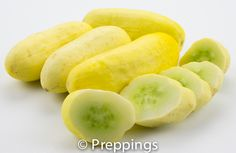 Salt And Pepper Cucumber - Search by flavors, find similar varieties and discover new uses for ingredients @ preppings.com