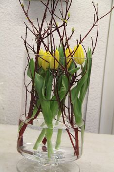 Hartrigel & tulips in glass vase sunk DIY tutorial - Frühling Flower Crafts, Diy Flowers, Fleurs Diy, Chalkboard Print, Backyard Sheds, Deco Floral, Party Centerpieces, Diy Tutorial, Flower Arrangements