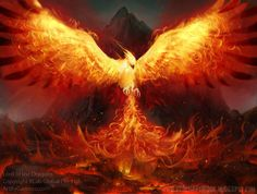 Hi, I'm Phoenix. The only living Phoenix dragon to be known. I have fire power, I can lay these white eggs with flames on them, I am kinda mean at first but when you get to know me I am nice. Fantasy Animal, Fantasy Art, Firebird, Rise From The Ashes, Phoenix Rising, Dark Phoenix, Mythological Creatures, Magical Creatures, Fairytale Creatures