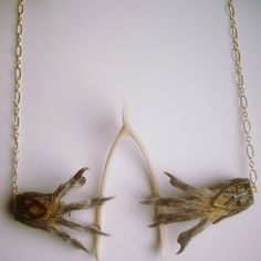 Taxidermy Jewelry Gothic Victorian Squirrel Foot Wishbone Necklace 14K