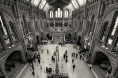Natural History Museum: http://hdrphotographer.blogspot.com/2014/10/natural-history-museum.html