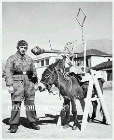 German soldier and the antitank gun