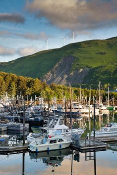 """Kodiak, Alaska...also known as Alaska's Emerald Isle or """"The Rock."""" Second largest island in the United States and the largest one in Alaska, home to some of the world's largest brown bears, and the location of one of the nation's biggest Coast Guard bases."""