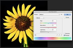 How to Change the Color of an Object Using Photoshop in 4 Simple Steps