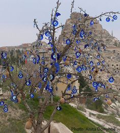"This tree was decorated with evil eye beads in Turkey. Can we call call it ""evil eye tree"" Hamsa, Evil Eye Art, Eye Images, Capadocia, Bottle Trees, Turkish Art, Evil Eye Jewelry, Public Art, City Photo"