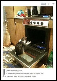 He's a cat. He's definately summoning satan. lmao!!  i would freak the hell out if i saw my cat doing this...a picture would be the farthest thing from my mind.  but this is pretty funny.